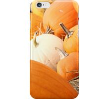 Pumpkin Patch No. 001 iPhone Case/Skin