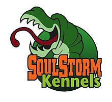 SoulStorm Kennels Photographic Print