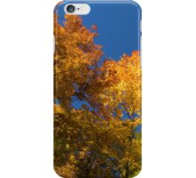 Glorious Fall Colors - Just Lift Your Head iPhone Case/Skin