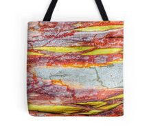 89 Bark Bright blue, red, yellow Tote Bag