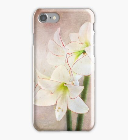 Picotee Amaryllis iPhone Case/Skin
