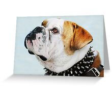 """""""This is my best side...don't you think?"""" Greeting Card"""