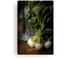 Still Life with Turnips Canvas Print