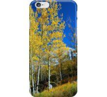 Skies of Blue iPhone Case/Skin