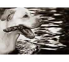 Retrieval #2 Photographic Print