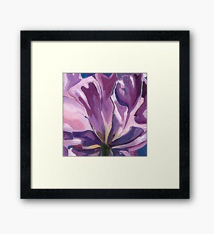Purple Tulip Petals Framed Print