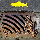 Yellow Fish  by Ethna Gillespie