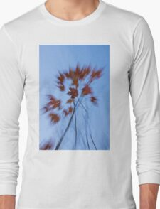 Abstract Impressions of Fall - the Song of the Wind  Long Sleeve T-Shirt