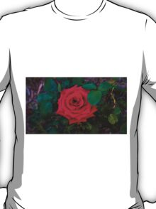 Arose to Perfection T-Shirt