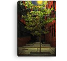 Fall Triumphant Canvas Print