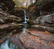 Green Turns To Gold at Adams Falls by Gene Walls