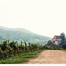 View of the castle Staufenberg #1 by Ronny Falkenstein