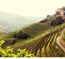 View of the castle Staufenberg #2 by Ronny Falkenstein
