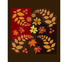 Fall leaves, berries and flowers Photographic Print
