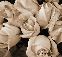 Sepia Roses by WildestArt