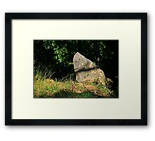 I saw a face and it spoke to me Framed Print