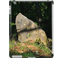 I saw a face and it spoke to me iPad Case/Skin