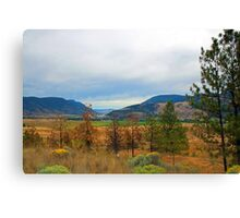 Beautiful landscape picture. Blue mountain, yellow and green grasses, trees. Canvas Print