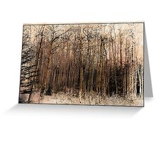 Sepia Aspens Greeting Card