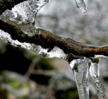 Frozen Branches Sticker