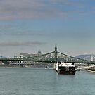 A River in Budapest ( 1 ) The Danube with Liberty Bridge by Larry Lingard-Davis