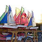 Sailing in Paris by Cédric Charbonnel