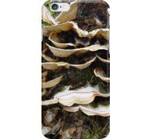 Brackets iPhone Case/Skin