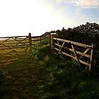 Open Gate by mpstone