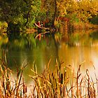 On Sinton Pond (3)...Colorado Springs by dfrahm