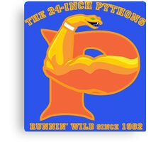 The 24-Inch Pythons Canvas Print