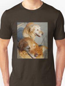 Twice as nice - Two Friendly Golden Retrievers Unisex T-Shirt