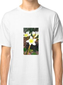 Beautiful Plumeria Flowers  Classic T-Shirt