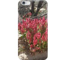 Hop to it! iPhone Case/Skin