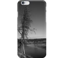 Three Ravens iPhone Case/Skin