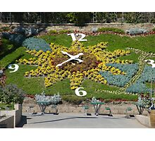 A flower garden clock that actually works... Photographic Print