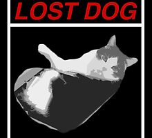 Lost Dog by jacub