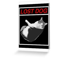 Lost Dog Greeting Card