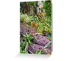 Tropical Fernery Nook Greeting Card