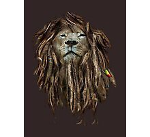 Lion Of Judah Photographic Print