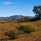 View towards Wilpena Pound, Flinders Ranges, South Australia. (Study #6) by johnrf