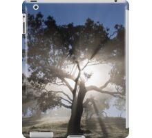~ Shine On ~ iPad Case/Skin