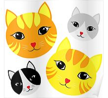 Lovely Cat Faces Poster