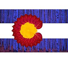 aspen tree Colorado flag Photographic Print