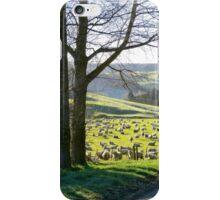 Shepard's Lane - Rural NZ iPhone Case/Skin