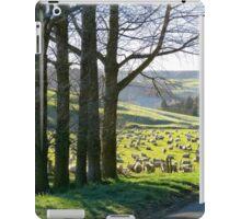 Shepard's Lane - Rural NZ iPad Case/Skin