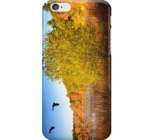 Hammond Pond Reservation iPhone Case/Skin