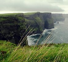Cliffs of Moher by joshduth
