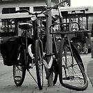 Good Bike. Bad Bike. Amsterdam. Holland. by David Dutton