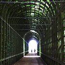 Tunnel of Light, Hampton Court, London. by David Dutton