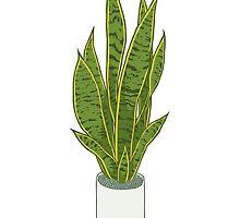 Sansevieria Trifasciata / Snake Plant (white) by heyletsart